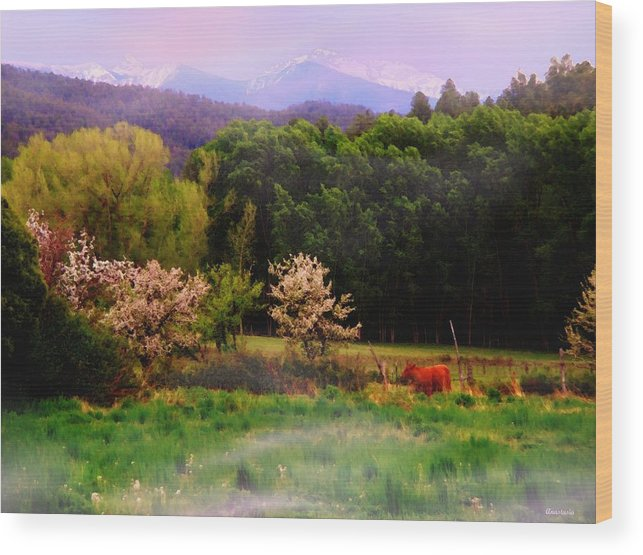 Mountains Wood Print featuring the photograph Deep Breath Of Spring El Valle New Mexico by Anastasia Savage Ealy