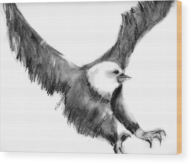 Eagle Wood Print featuring the drawing Eagle In Flight by Marilyn Barton