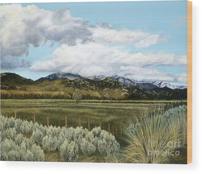 Landscape Painting Wood Print featuring the painting Garner Valley Meadow by Jiji Lee