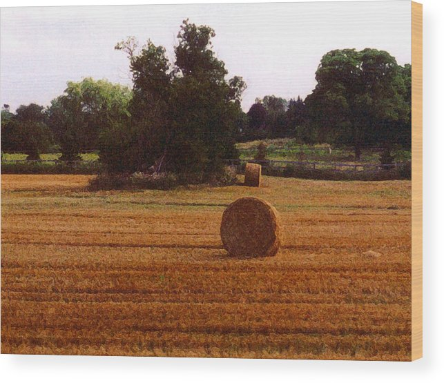 Landscape Wood Print featuring the photograph Hay Rolls 2 Db 2 by Lyle Crump
