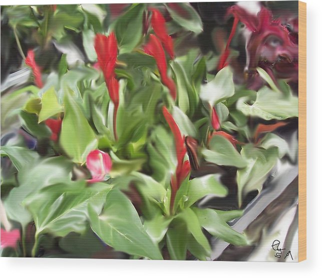 Flowers Wood Print featuring the digital art Kingwood Center 2 by Crystal Webb