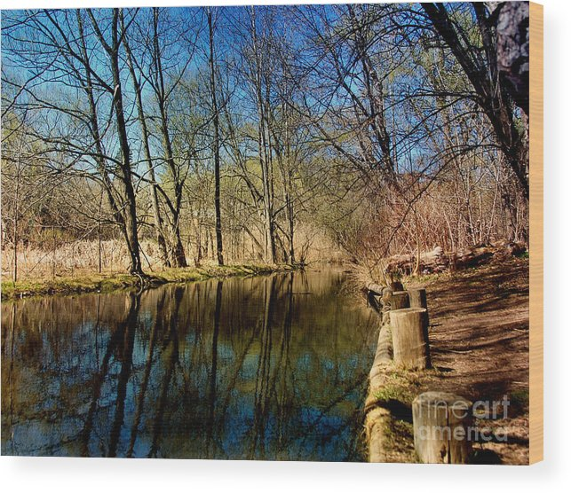 Water Wood Print featuring the photograph Late Afternoon Canal by Elaine Manley