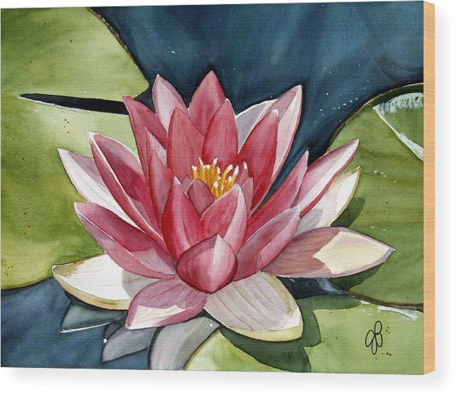 Water Lilly Flower Wood Print featuring the painting Lilly Pond by Julie Pflanzer
