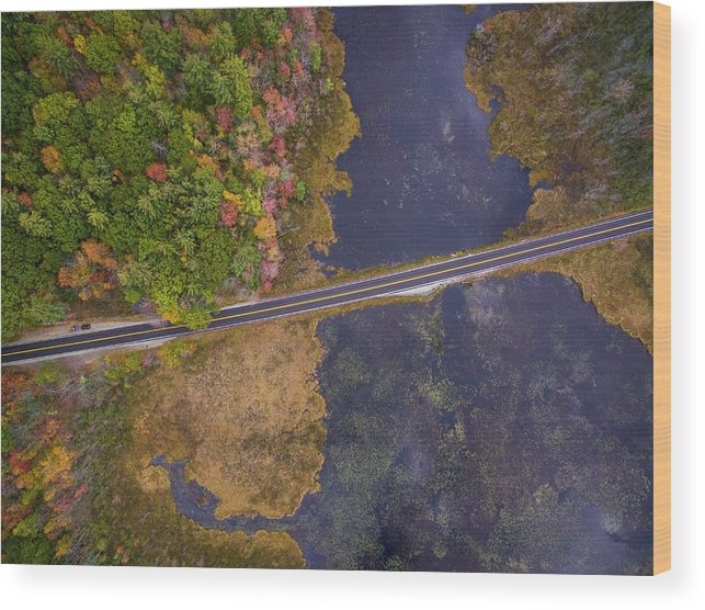 Landscape Wood Print featuring the photograph Nh Autumn by Joel Sosa