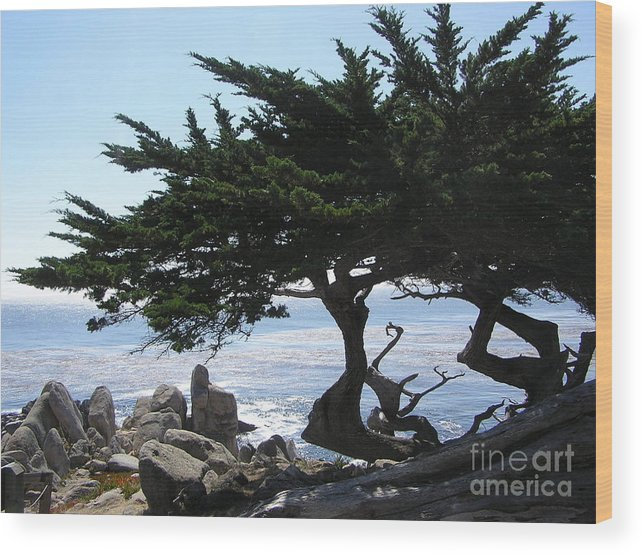 Seascape Wood Print featuring the photograph Pacific Cypress View by Richard Mansfield