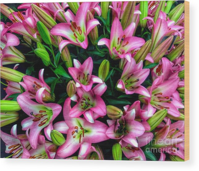 Lilies Wood Print featuring the photograph Pink And White Lilies by Joan-Violet Stretch