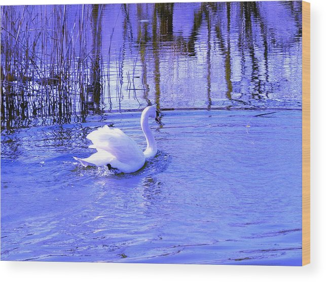 Landscape Wood Print featuring the photograph Reflections In Blue by Kendall Eutemey
