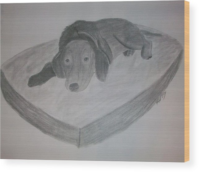 Dog Wood Print featuring the drawing Resting Dog by Kristen Hurley