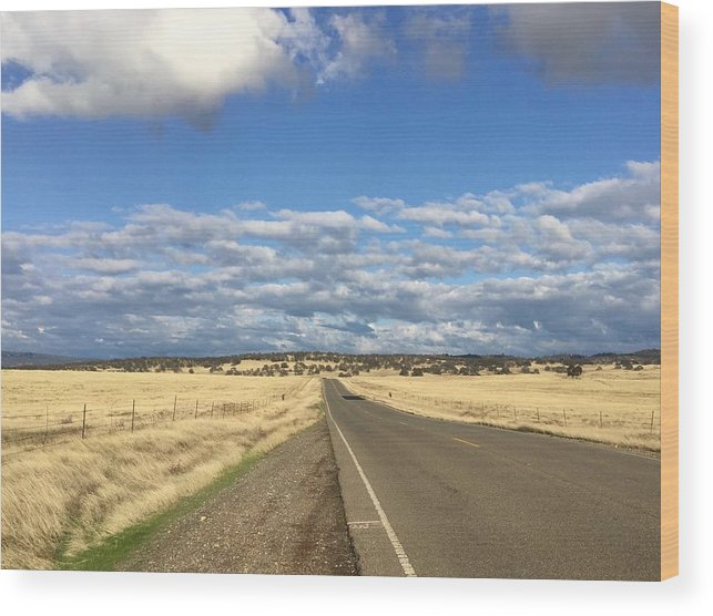 California Wood Print featuring the photograph Road To Nowhere by Dani Keating