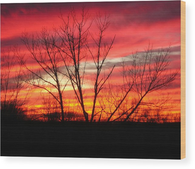 Sky Fire Wood Print featuring the photograph Sky Fire by Ron Moses
