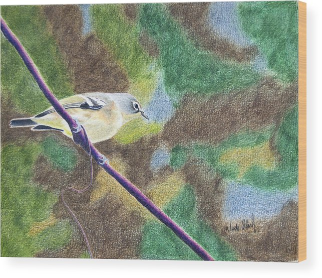 Birds Wood Print featuring the painting Solitary Vireo by Wade Clark
