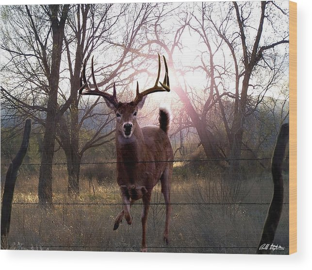 Whitetail Deer Wood Print featuring the digital art The Leap by Bill Stephens