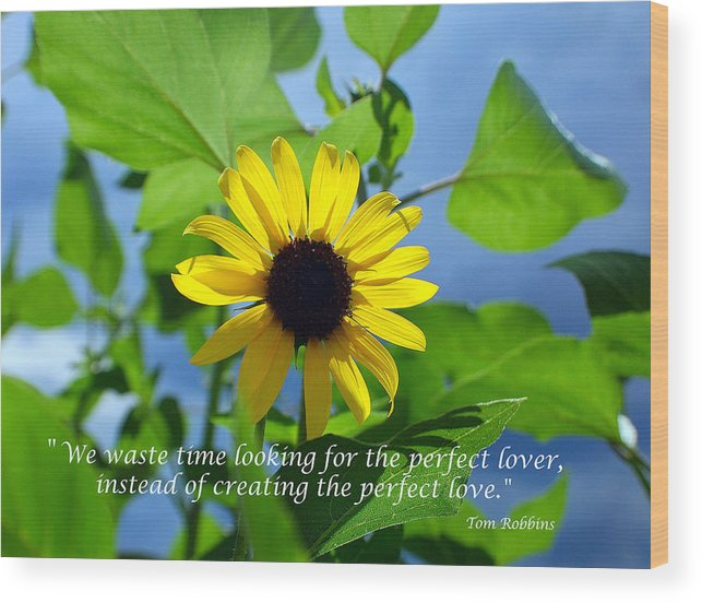 Sunflowers Wood Print featuring the photograph The Perfect Lover by Heather S Huston