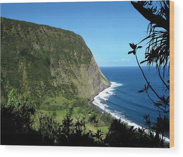 Hawaii Wood Print featuring the photograph Waimanu Valley On Hawaii by Brendan Reals