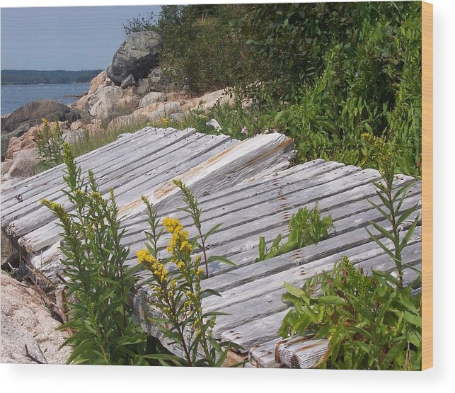 Nature Wood Print featuring the photograph Washed Ashore by Lisa Kane