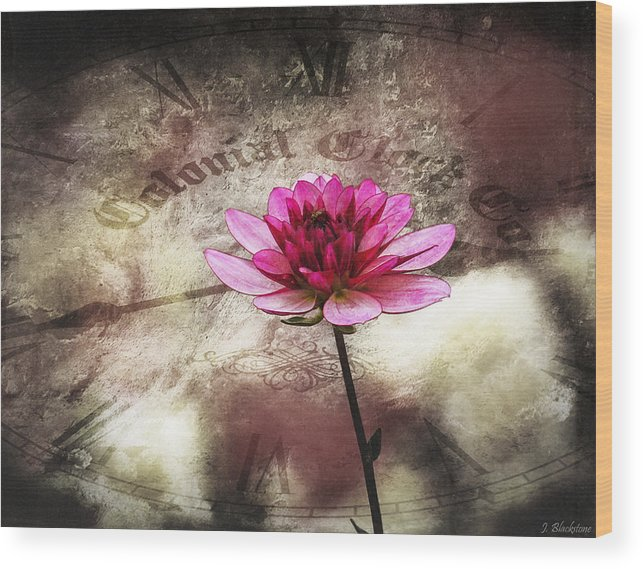 Pink Wood Print featuring the photograph The Color Of Springtime - Vintage Art By Jordan Blackstone by Jordan Blackstone