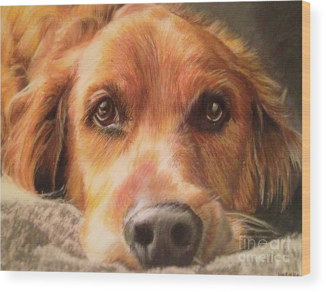 Golden Retriever Wood Print featuring the mixed media Bobby by Kelli Porter