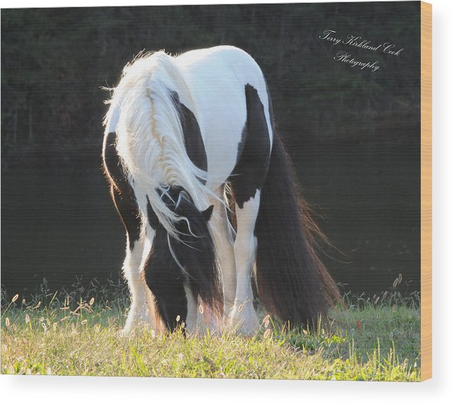 Equine Wood Print featuring the photograph In The Wind by Terry Kirkland Cook