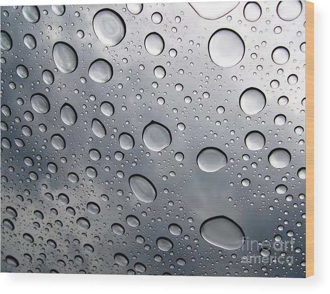 Rain Wood Print featuring the photograph Raindrops by Kenna Westerman