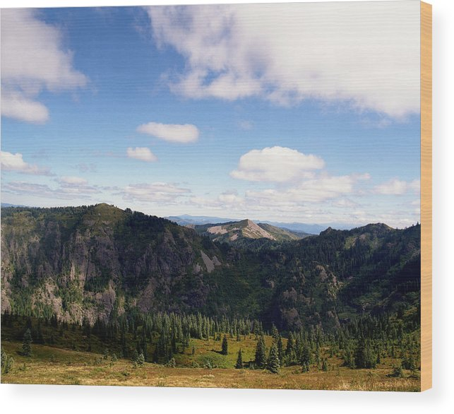 Nature Wood Print featuring the photograph Silver Star Mountain Top by Benjamin Garvey