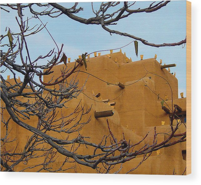 Branches Wood Print featuring the photograph Adobe Branches by Jon William Lopez
