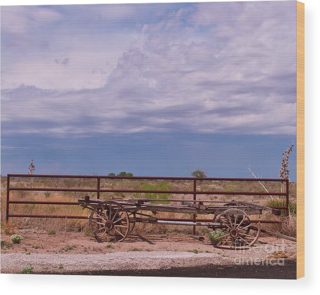 Scenic Wood Print featuring the photograph The Ranch by Terry Cotton