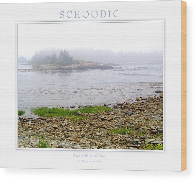 Landscape Wood Print featuring the photograph Schoodic by Peter Muzyka
