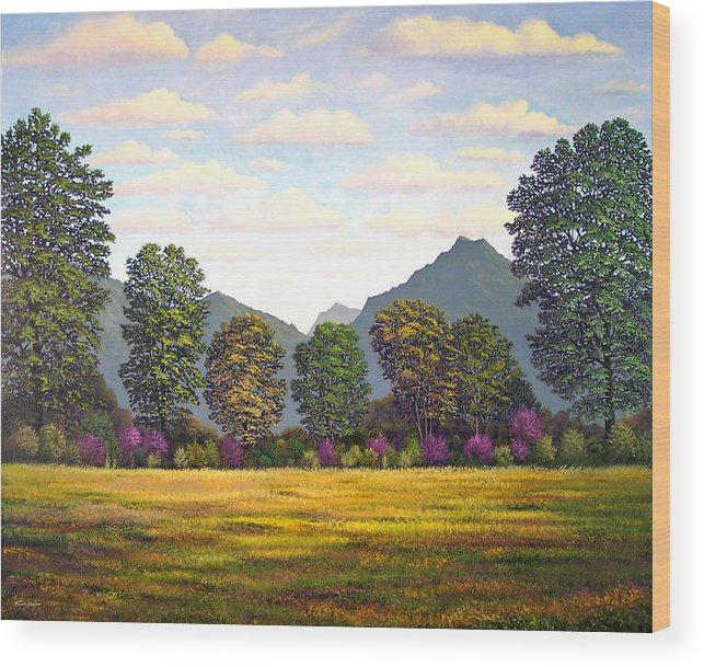 Mountains Wood Print featuring the painting Sutter Buttes In Springtime by Frank Wilson