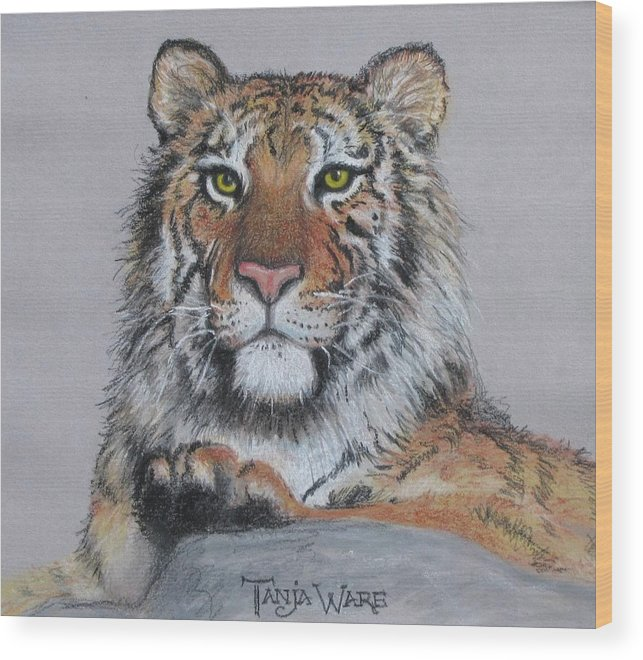Tiger Wood Print featuring the painting Tiger by Tanja Ware