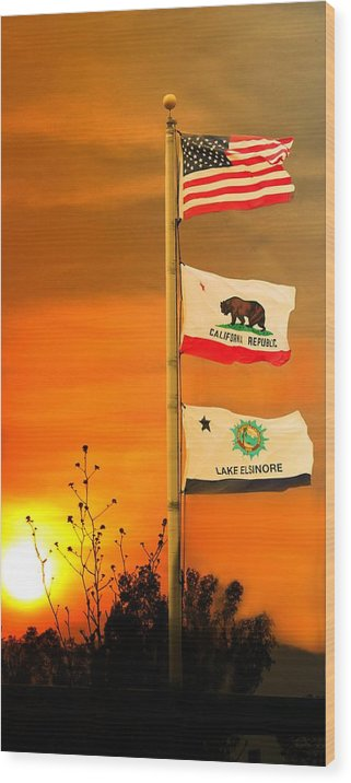 Wood Print featuring the photograph California Glory by Richard Gordon