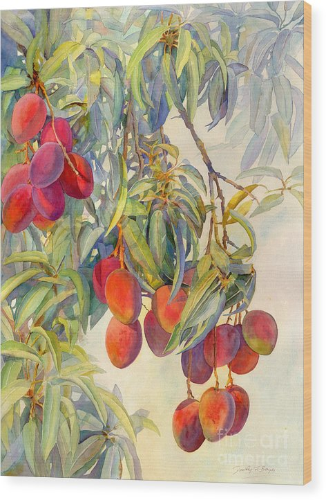 Mangoes in the Evening Light by Dorothy Boyer