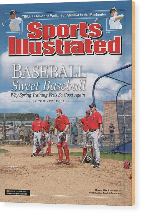 Jeff Mathis Wood Print featuring the photograph Baseball Sweet Baseball Why Spring Training Feels So Good Sports Illustrated Cover by Sports Illustrated