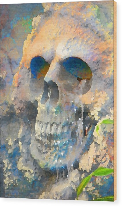 Halloween Wood Print featuring the photograph Skull by Danielle Stephenson
