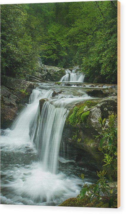 Rhododendron Wood Print featuring the photograph Wildcat Falls In Joyce Kilmer Wilderness by Todd Ransom