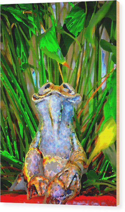 Wood Print featuring the digital art Funny Frog by Danielle Stephenson