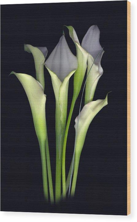 Calla Wood Print featuring the digital art Bouquet of Callas by Sandi F Hutchins
