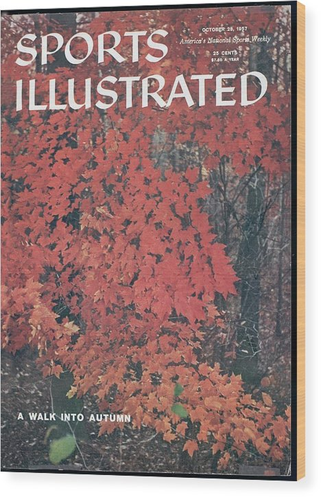 Magazine Cover Wood Print featuring the photograph Bear Mountain State Park Sports Illustrated Cover by Sports Illustrated