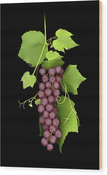 Wood Print featuring the photograph Fruit Of The Vine by Sandi F Hutchins