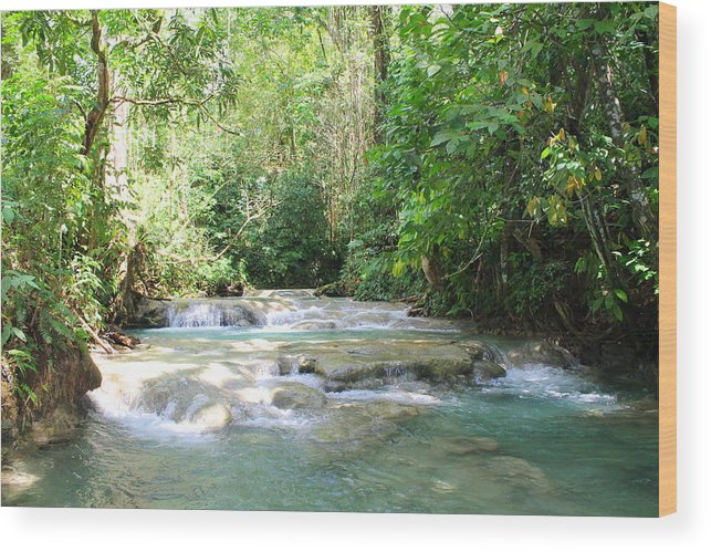 Mayfield Falls Wood Print featuring the photograph Mayfield Falls Jamaica by Debbie Levene