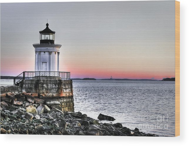 Lighthouse Wood Print featuring the photograph Bug Light by Brenda Giasson
