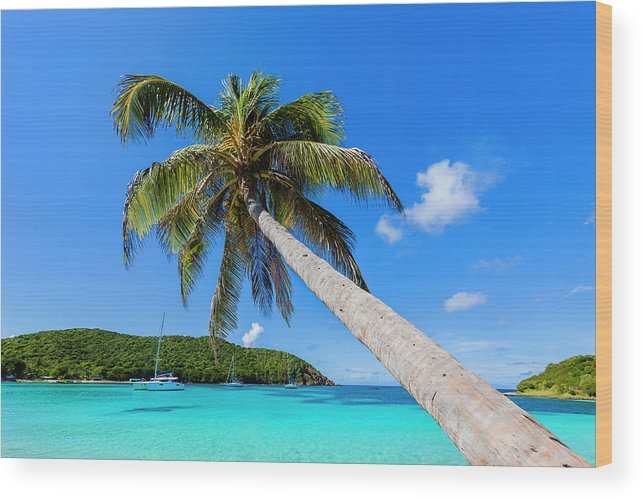 Water's Edge Wood Print featuring the photograph Salt Whistle Bay, Mayreau by Argalis