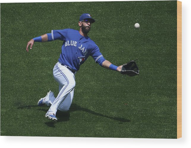 People Wood Print featuring the photograph Tampa Bay Rays V Toronto Blue Jays by Tom Szczerbowski