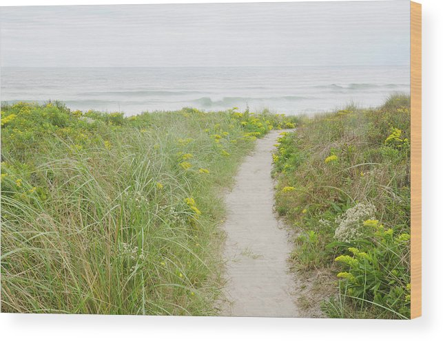 Tranquility Wood Print featuring the photograph Usa, Massachusetts, Nantucket Island by Chuck Plante