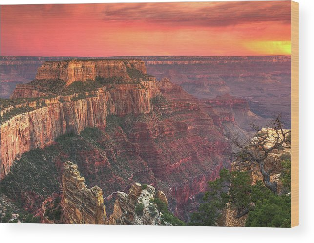 Tranquility Wood Print featuring the photograph Grand Canyon National Park by Michele Falzone