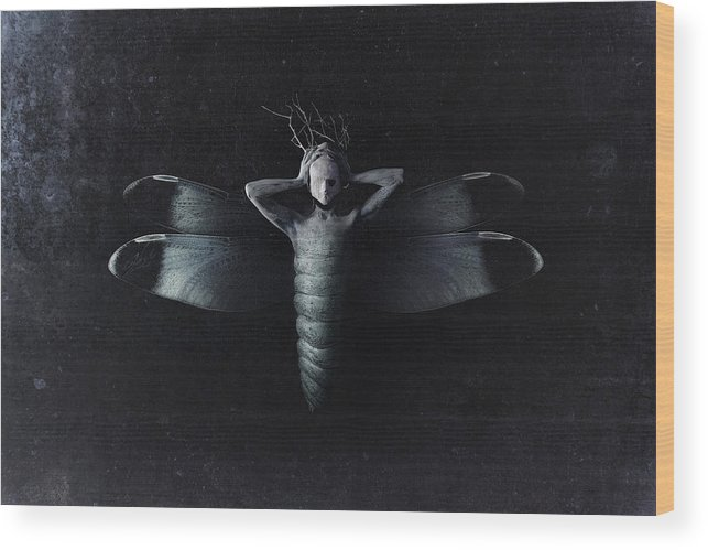 Moth Wood Print featuring the photograph The Moth by Victor Slepushkin