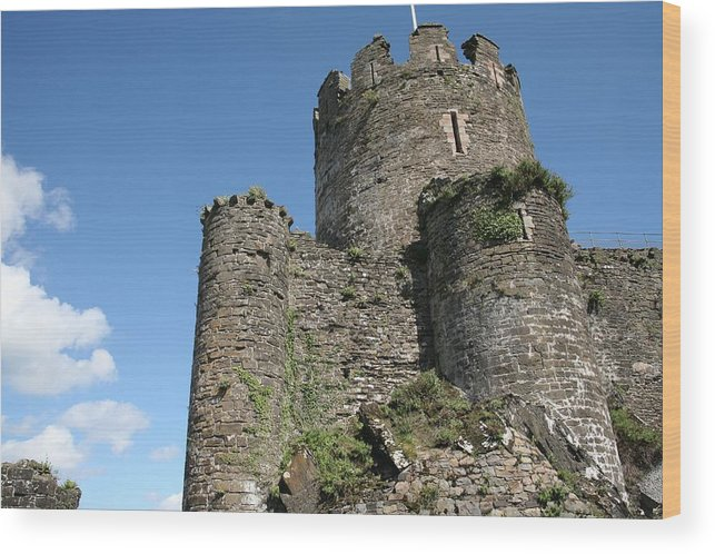 Castles Wood Print featuring the photograph Conwy castle by Christopher Rowlands