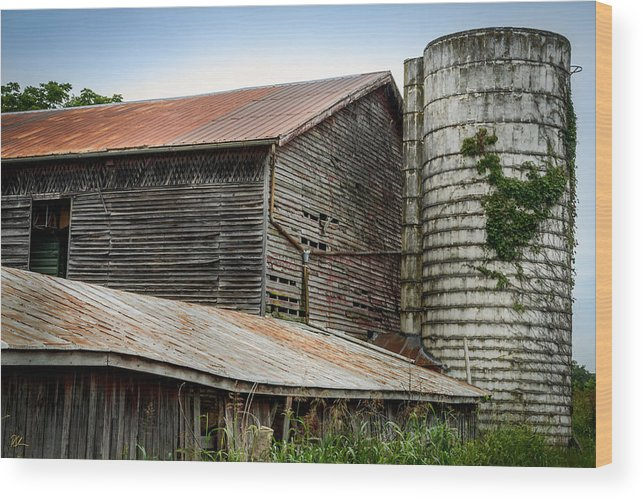 Shenandoah Valley Wood Print featuring the photograph Abandoned Barn by Pat Scanlon