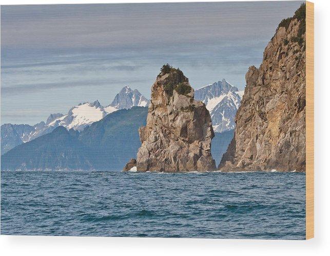 Wood Print featuring the photograph Alaska Coastline Landscape by Richard Jack-James