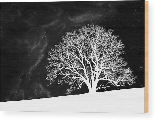 Alone Wood Print featuring the photograph Alone on a Hill by Tom Mc Nemar