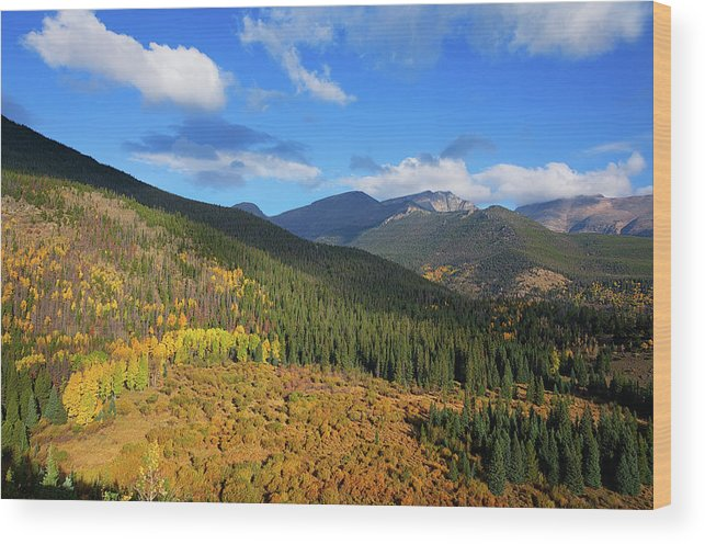 Scenics Wood Print featuring the photograph Autumn Color In Colorado Rockies by A L Christensen